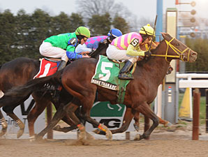 More Than a Reason wins the 2010 Queens County.