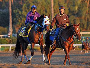 Moreno  - Breeders' Cup 2013 - Santa Anita