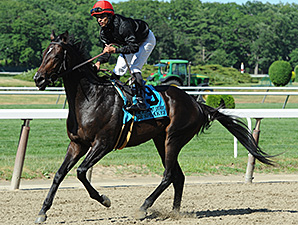 Mr Speaker wins the 2014 Belmont Derby Invitational.