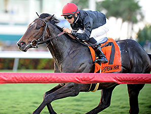 Mr Speaker wins the 2013 Dania Beach Stakes.