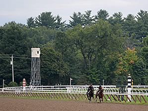 Mr Speaker and Ragtime work at Saratoga.