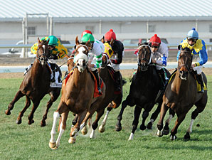 Mr. Vegas wins the 2012 Col. E. R. Bradley Handicap.
