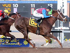 Mr. Wizard wins the 2013 Albert Dominguez Memorial Handicap.