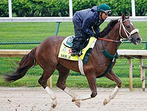 Mr. Z gallops at Churchill Downs April 19.