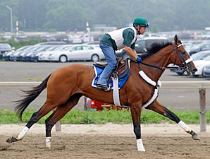 Mucho Macho Man - Belmont June 1, 2011.