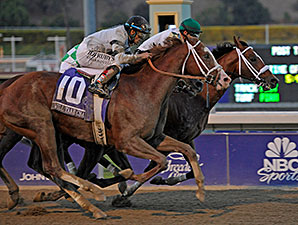 Mucho Macho Man (inside rail) edges out Will Take Charge to win the 2013 Breeders' Cup Classic.
