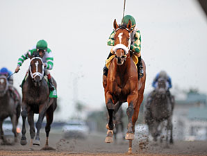 Mucho Macho Man wins the 2012 Florida Sunshine Millions Classic.