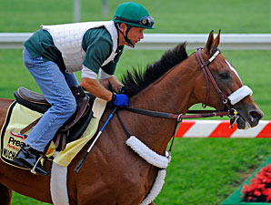 Mucho Macho Man - Pimlico May 19, 2011.