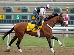 Mucho Macho Man at Santa Anita 11/1/2012.