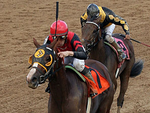Muir Woods wins the 2011 Norm Barron Queen City Oaks.
