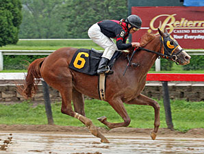 Muir Woods wins the 2011 Tomboy Stakes.