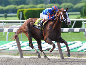 Munnings wins the 2009 Tom Fool.