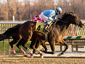 Music Please wins the 2010 Squan Song.