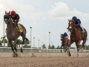 Musical Romance wins the 2012 Mike Sherman Memorial.