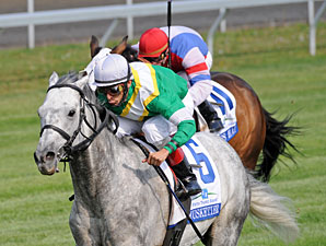 Musketier wins the 2010 Elkhorn.