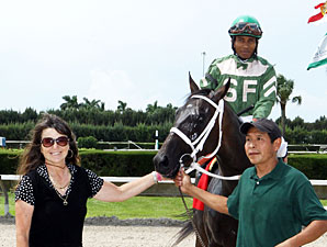 My Brown Eyed Guy wins the 2013 Florida Stallion Stakes, Dr. Fager Division.