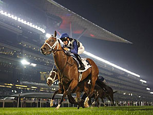 My Catch wins the 2014 Meydan Classic.