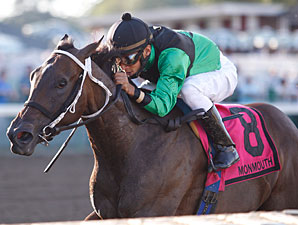 My Irish Girl wins the 2010 Miss Woodford Stakes.
