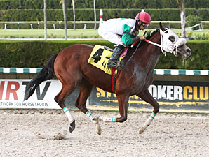 My Pal Chrisy wins the 2012 Elmer Heubeck Distaff Handicap.