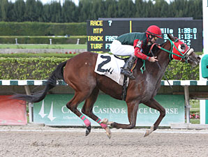 My Pal Chrisy wins the 2011 Elmer Heubeck Distaff.