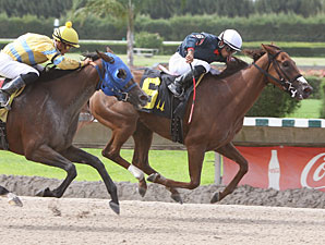 Nasty Rumor wins the 2011 Crystal Rail Stakes.