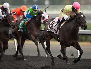 Native Bombshell wins the 2013 Ruling Angel Stakes.
