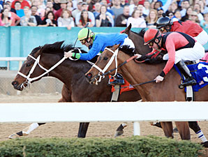 Native Ruler wins the 2011 King Cotton.