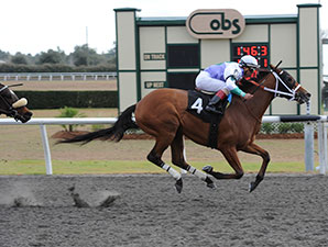 Naughty Holiday wins the 2014 OBS Championship Stakes, Filly Division.
