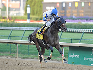 Neck 'n Neck wins the 2012 Matt Winn Stakes.