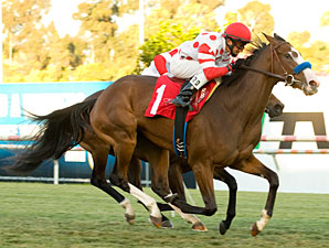 Neversaidiwassweet in the 2010 Miesque Stakes.