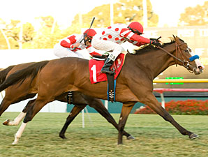 Neversaidiwassweet racing down the stretch in the Miesque Stakes.