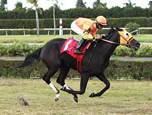 Nicki Starshine wins the 2012 John Franks Juvenile Fillies.