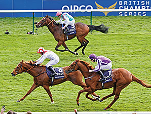 Night of Thunder wins the 2014 QIPCO Two Thousand Guineas (Eng-I).