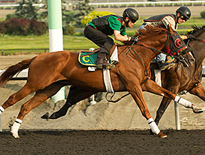Niigon Express - Woodbine, July 3, 2014.
