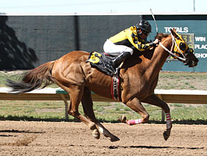 No It Aint wins the Arapahoe Park Sprint.