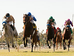 No Jet Lag wins the 2013 City of Hope Stakes.