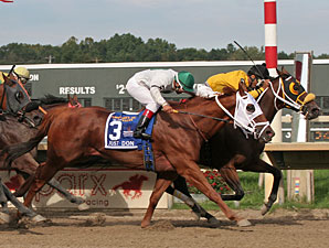 Noble Maz wins the 2011 Mr. Jenney.
