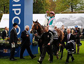 Noble Mission wins the QIPCO Champion Stakes.