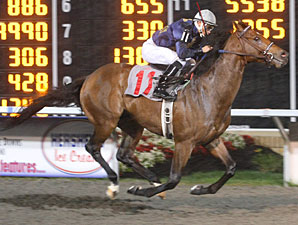 Noble's Promise wins the 2009 Fitz Dixon, Jr. Memorial Juvenile Stakes at Presque Isle Downs.