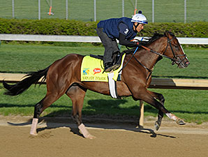Normandy Invasion works at Churchill Downs 4/21/2013.