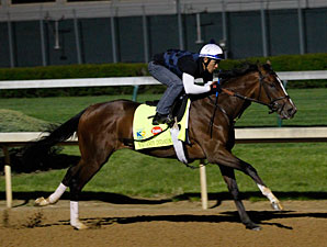 Normandy Invasion - Churchill Downs, April 27, 2013.