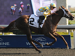Northern Passion wins the 2012 Fury Stakes.