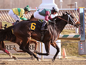 Northern Station wins the 2010 Nellie Morse.