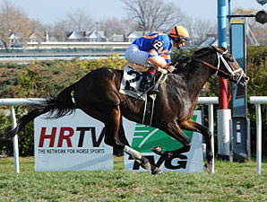 Notacatbutallama wins the 2012 Super Mario Stakes.