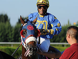 Notyouraveragejoe wins the 2014 Showing Up Stakes.