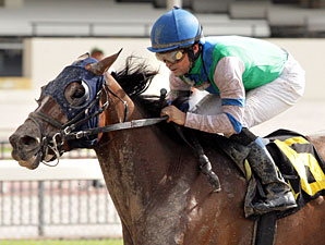 Numb Lips wins the 2012 Primal.