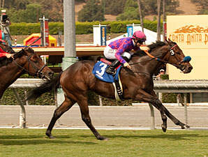 Obviously wins the 2012 Arroyo Seco Mile.
