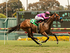 Obviously wins the 2013 Shoemaker Mile.