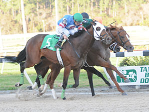 Odysseus wins the 2010 Tampa Bay Derby.
