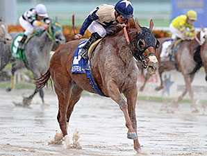 Ol Donyo wins the 2014 Musical Romance Stakes.